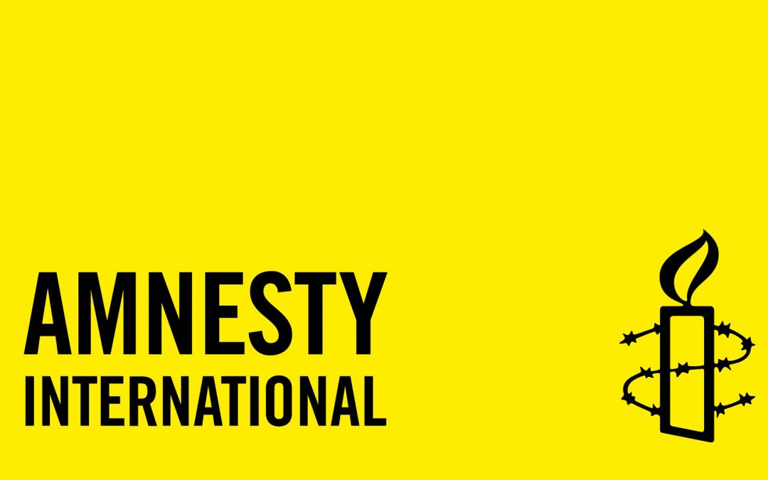 Amnesty Int'l launches campaign for action against Turkey's media crackdown