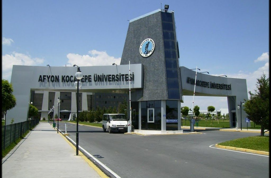 11 academics, university personnel detained over coup charges