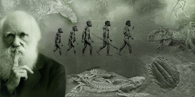 Evolution theory removed from new school curriculum