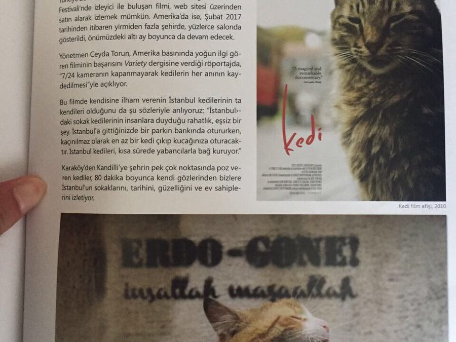 "Istanbul Municipality shuts down magazine for publishing graffiti reading ""Erdo-gone"""