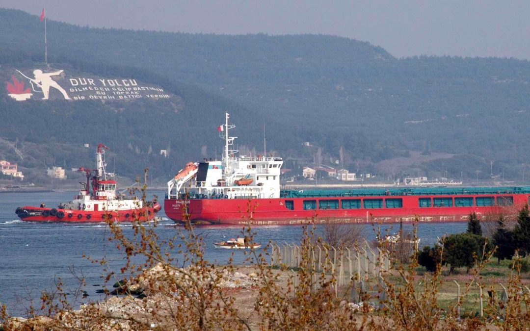 Cargo vessel forced to dock after captain allegedly insulted Erdogan in radio conversation