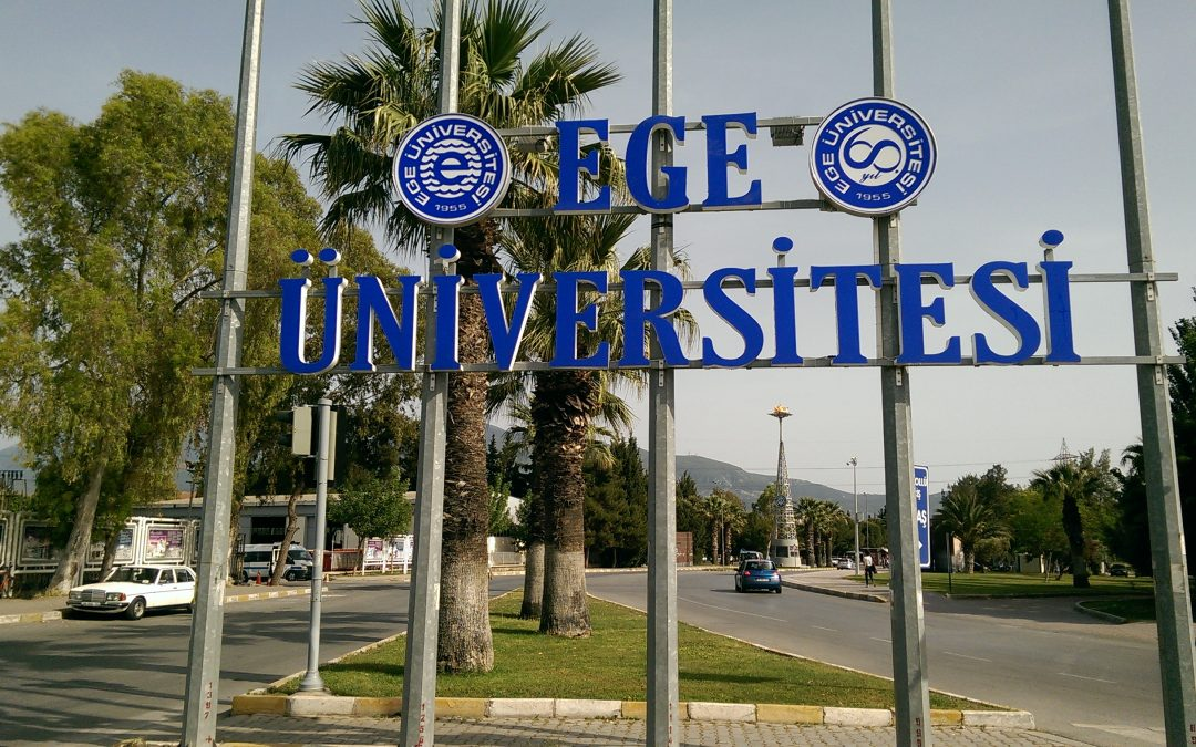 Another 12 academics, university personnel detained over ByLock use