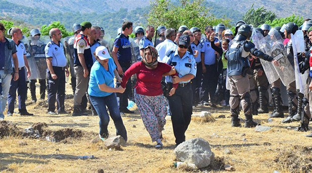 Villagers under custody for protesting felling of 10-year-old pine trees