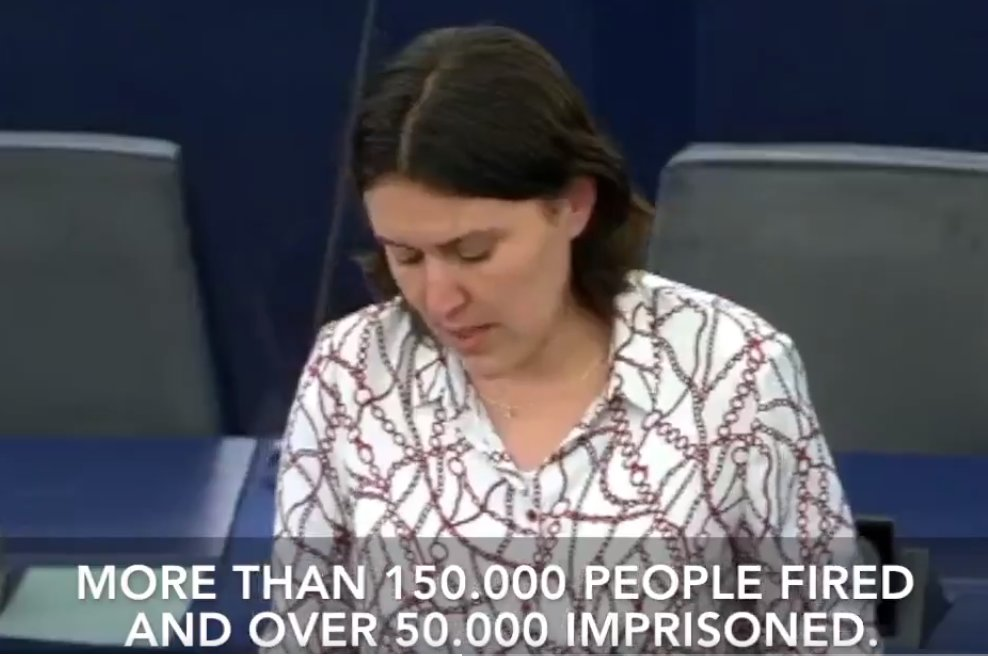 EP rapporteur: Thousands became victims of massive crackdown on all opposition voices