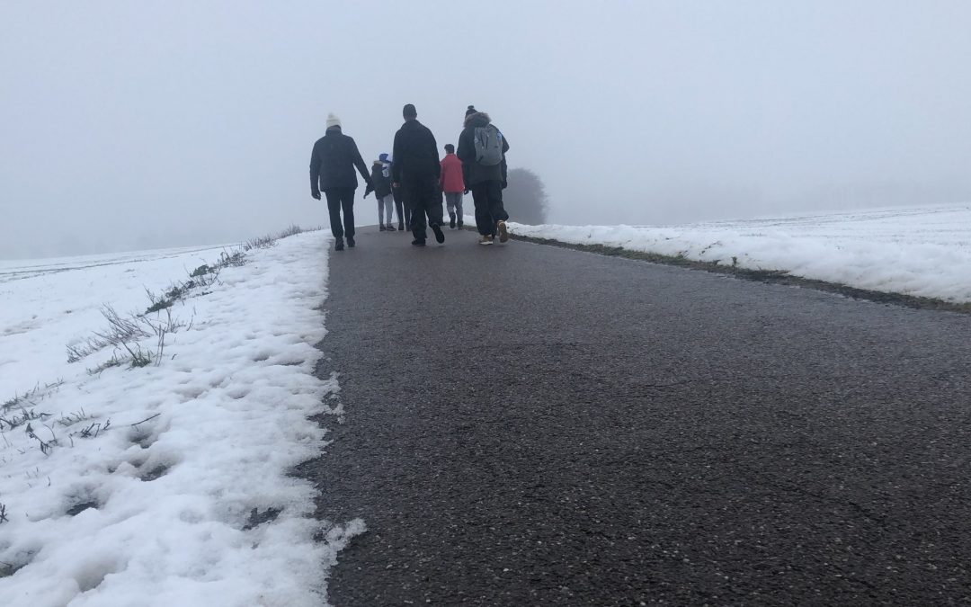 Group of activists walking across Europe raises 40,000 euros for Turkish refugees in Greece